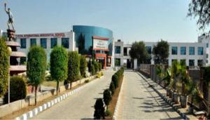 royal international school fatehabad